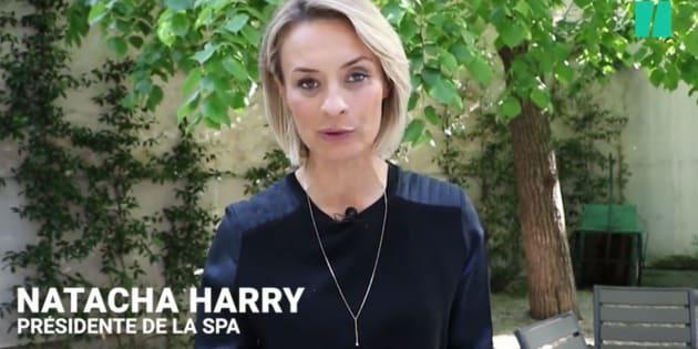 """La patronne de la SPA Natacha Harry annonce sa démission, après de """"violentes attaques"""" à son encontre"""
