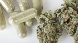 Israel exportará cannabis