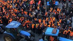Il Movimento 5 Stelle chiede scusa ai gilet arancioni: