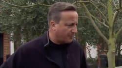 Así habló Cameron (por fin), tras el caos que resultó ser el