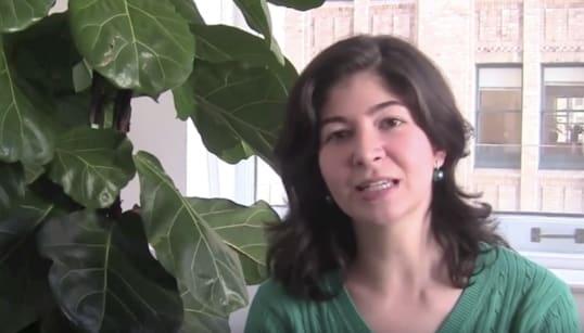 A economista que deve trabalhar por políticas contra desmatamento no governo
