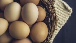 Petit guide à l'usage de ceux qui veulent remplacer les œufs (ou qui n'en ont plus en
