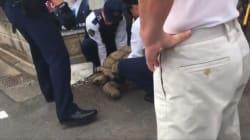 迷子の巨大ゾウガメ、警官4人がかりで「確保」。カメラはその瞬間を捉えていた(動画)