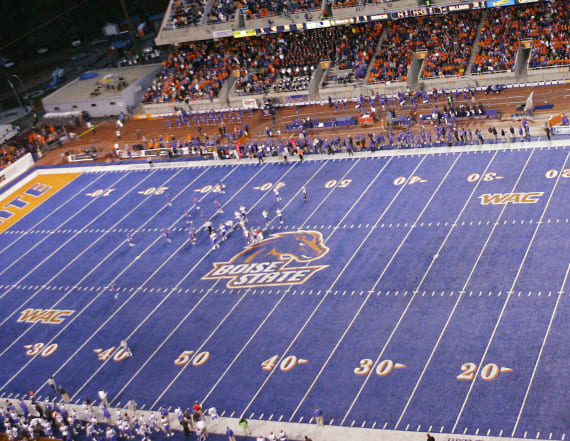 Boise State's turf is very confusing for geese