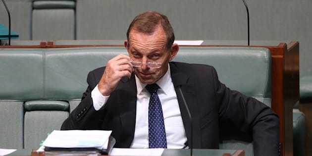 Tony Abbott is being pushed for a frontbench promotion