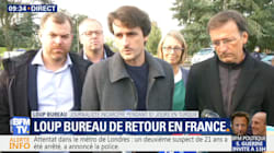 Loup Bureau: