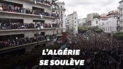 Les images de la marée humaine à Alger contre un 5e mandat de
