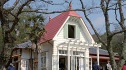 「ジブリパーク」が愛知に開設へ。「トトロのふるさと村」など複数予定。愛知万博の跡地に2020年代初め