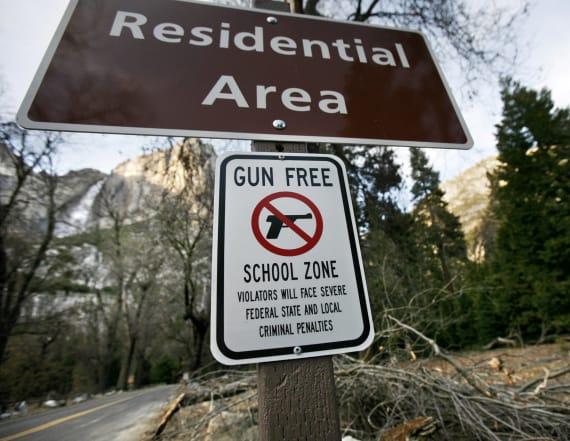 Columbine survivor wants concealed carry in schools