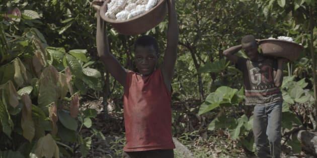 """L'enquête sur le cacao et le travail des enfants du dernier """"Envoyé Spécial"""" n'a pas été diffusée en Afrique ce jeudi 10 janvier."""