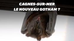 Comment Cagnes-sur-Mer veut préserver ses