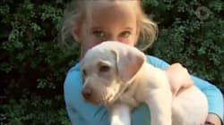 Stolen Labrador Puppy Sasha Has Been Returned To Her 'Ecstatic' 4-Year-Old