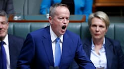 Bill Shorten Unleashes Scorching Attack On Government's Same-Sex Marriage