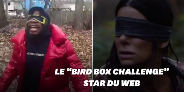 Netflix vous demande de ne pas participer — Bird Box Challenge