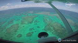 These Aerial Shots Of The Great Barrier Reef Will Break Your