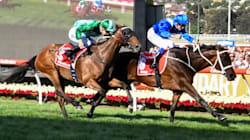 Cox Plate 2017: Winx Becomes A Turf Immortal, But Oh Boy, Only