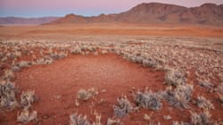 Desert 'Crop Circles' In Australia And Namibia Hold Sandy