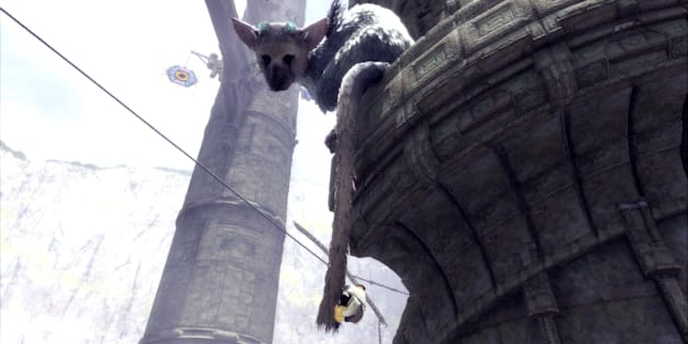 Trico and The Boy have a unique relationship.