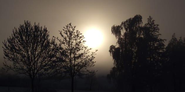 Não é bem a temperatura, mas a luminosidade que nos influencia.
