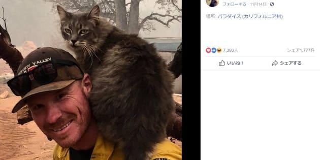 助けてくれた消防隊員の首に巻き付いて離れない猫さん