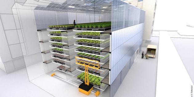 Voici la ferme de demain, urbaine, verticale et sans pesticide. Illustration.