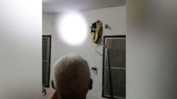 L'étrange bruit dans son mur était causé par... un serpent