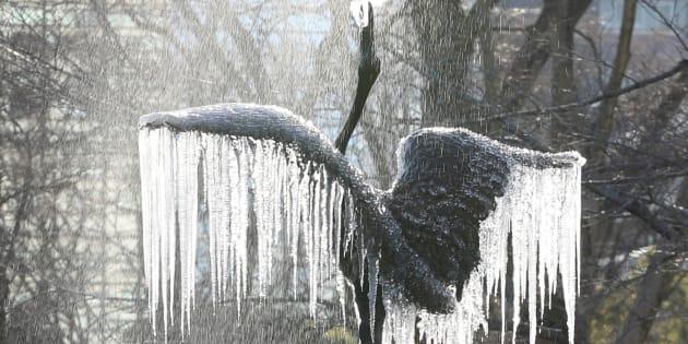 25日の朝、厳しい冷え込みとなった東京・日比谷公園で「鶴の噴水」につららが下がった。都心で氷点下4度を記録するのは48年ぶりで、今冬一番の寒さとなった。