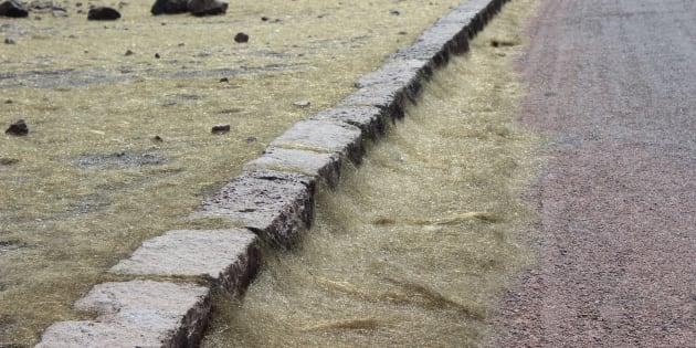 Des cheveux de Pélé jonchent une route autour du volcan de Kilauea à Hawaï, lors de l'éruption de 2008.
