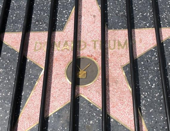 Trump's Walk of Fame star put behind bars