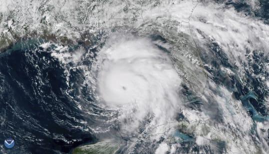 Cyclone Gaja: Puducherry CM Reviews Preparedness, NDRF On
