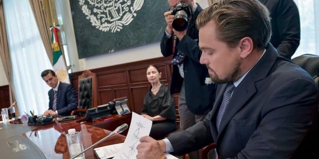 Leonardo DiCaprio s'engage pour sauver le plus petit cétacé au monde en voie d'extinction.