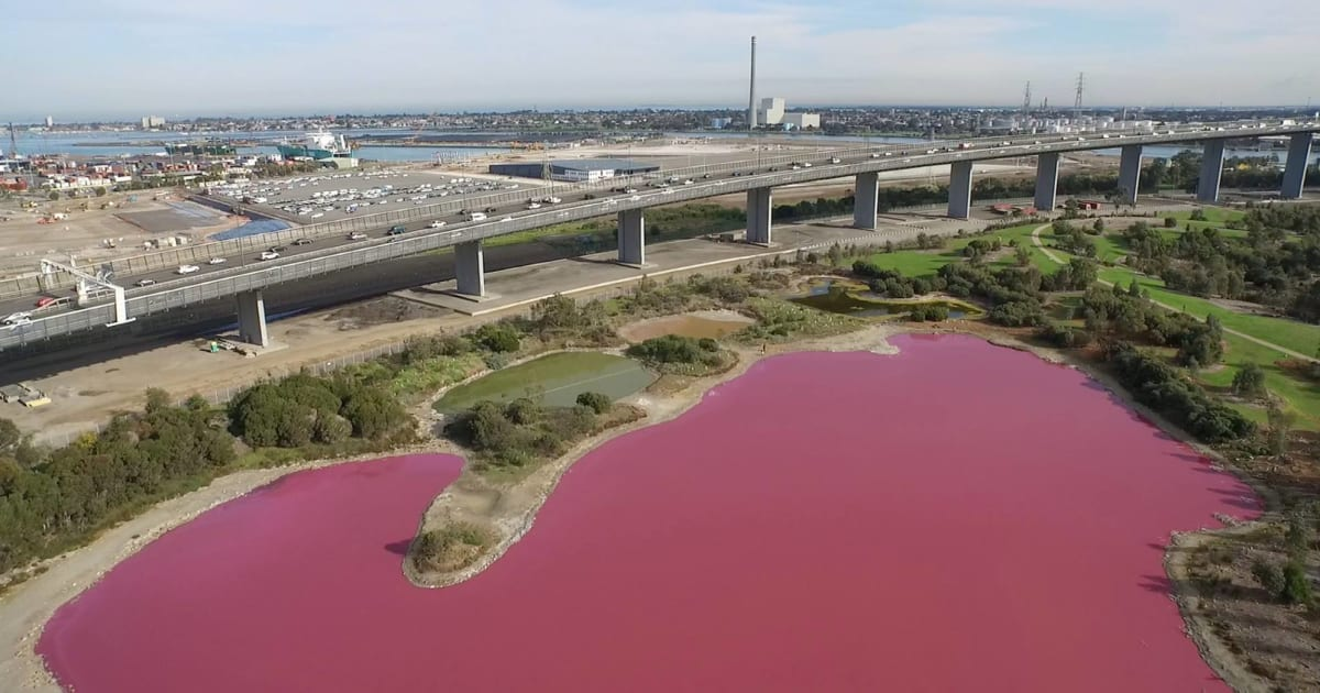 A Melbourne Australia Lake Has Turned Bright Pink But You Re Not Allowed To Swim In It Huffpost