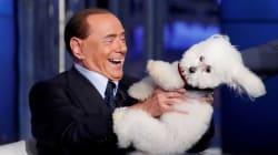 Déjà vu: Berlusconi anuncia su candidatura al Parlamento