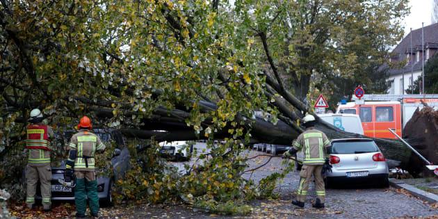 Los bomberos apartan de la carretera un árbol caído por la tormenta en Berlín (Alemania).