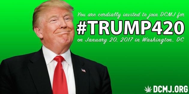 """""""Trump420"""": 4200 joints pour manifester contre l'administration de Donald Trump"""