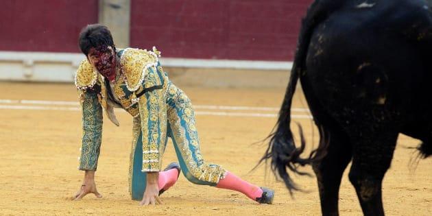 El diestro Cayetano Rivera es cogido en la faena a su primer toro durante la corrida de la Feria del Pilar de Zaragoza celebrada en el coso de La Misericordia.