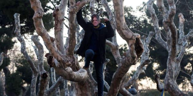 Un hombre con una careta de Carles Puigdemont subido a un árbol. EFE/Enric Fontcuberta