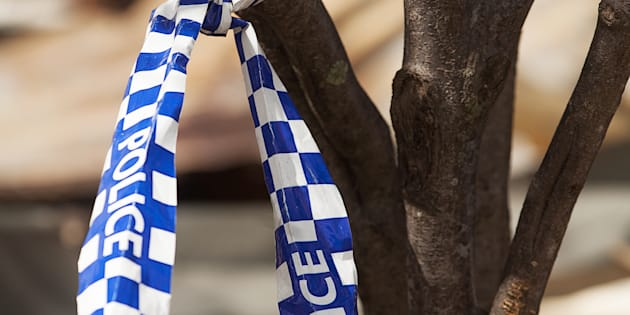 A man has died after colliding with a wild pig in NSW.