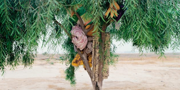 """""""L'arbre de Bisharah et Anwar"""" 2015"""
