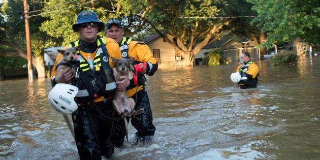 Miembros de los servicios de emergencia actúan en Texas.