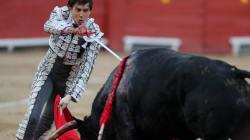 El Gobierno recurre ante el Constitucional la ley de toros de