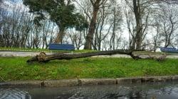 Seis comunidades continúan con aviso naranja por fuertes vientos y por