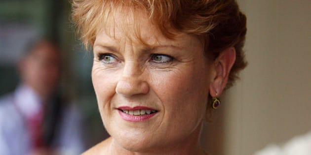 Pauline Hanson has outlined a range of policies she would pursue as PM.