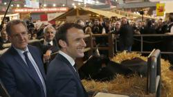 BLOG - 5 mesures que le gouvernement de Macron doit prendre pour protéger les
