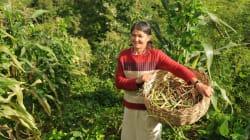 Entre a violência e o esquecimento: A realidade das trabalhadoras rurais no