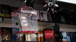 El fiscal pide levantar el secuestro de 'Fariña' y rechazar la demanda de Bea