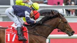 Almandin Wins The 2016 Melbourne