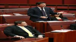 Prime Minister Malcolm Turnbull Calls Scott Ludlam's Citizenship Oversight