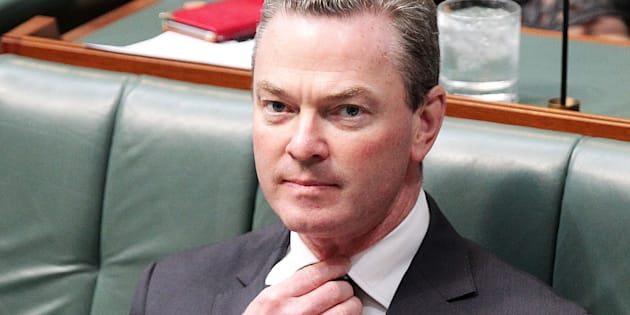 Christopher Pyne made his claim on Channel 9's Today program.