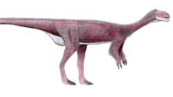 El 'Chilesaurus', el